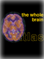 the-whole-brain